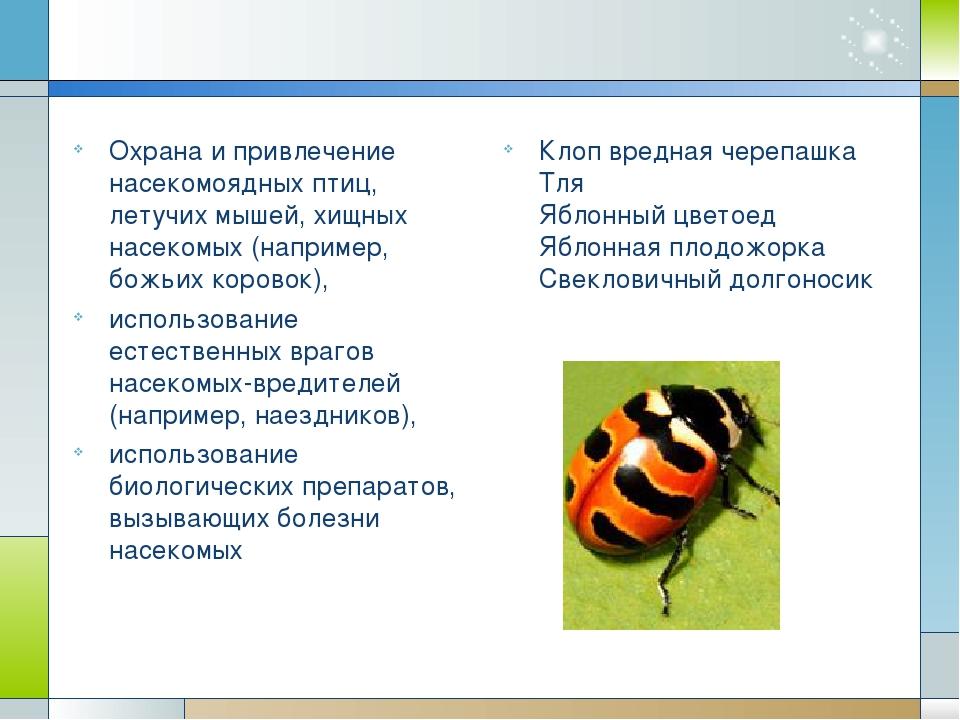 Охрана и привлечение насекомоядных птиц, летучих мышей, хищных насекомых (на...