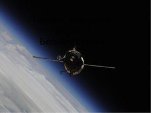 Первые животные в космосе: Белка и Стрелка