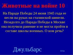 Животные на войне 10 На Параде Победы 24 июня 1945 года ее несли на руках на