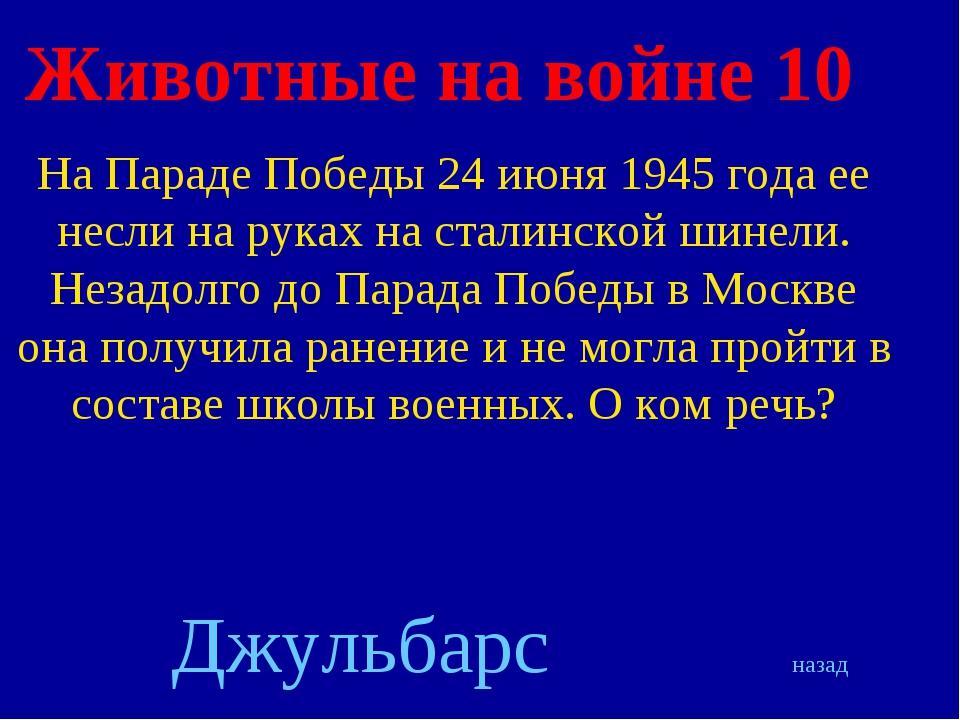 Животные на войне 10 На Параде Победы 24 июня 1945 года ее несли на руках на...
