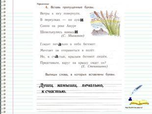 Работа в тетради стр.80 и и а а Души, камыши, печально, к счастью. http://ku4