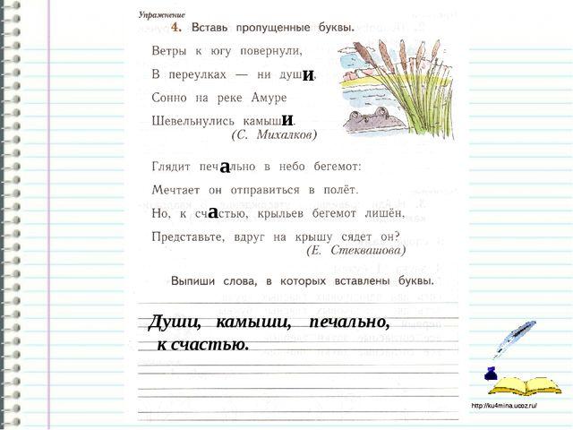 Работа в тетради стр.80 и и а а Души, камыши, печально, к счастью. http://ku4...
