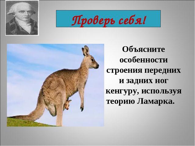 Проверь себя! Объясните особенности строения передних и задних ног кенгуру, и...
