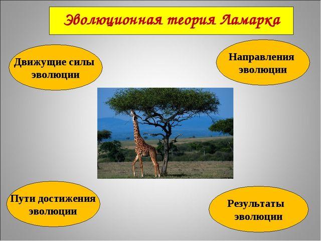 Эволюционная теория Ламарка Движущие силы эволюции Направления эволюции Пути...