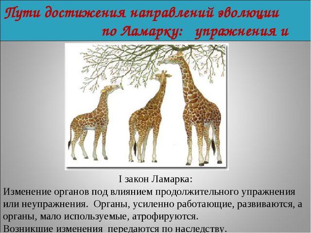 Пути достижения направлений эволюции по Ламарку: упражнения и неупражнения. I...