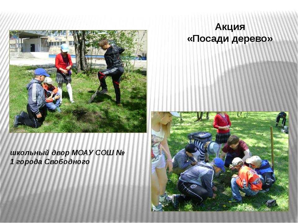 школьный двор МОАУ СОШ № 1 города Свободного Акция «Посади дерево»
