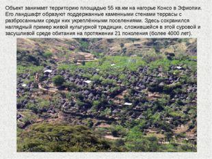 Объект занимает территорию площадью 55 кв.км на нагорье Консо в Эфиопии. Его