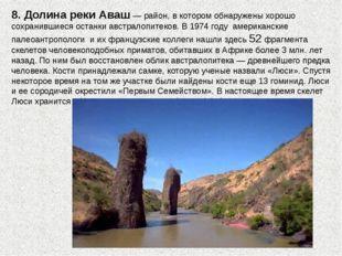 8. Долина реки Аваш — район, в котором обнаружены хорошо сохранившиеся останк