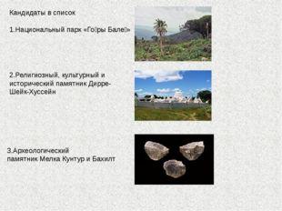 Кандидаты в список 1.Национальный парк «Го́ры Бале́» 2.Религиозный, культурны