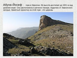 Абуна-Йосеф - гора в Эфиопии. Её высота достигает до 4301 м над уровнем моря.