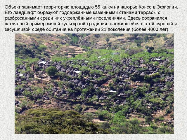 Объект занимает территорию площадью 55 кв.км на нагорье Консо в Эфиопии. Его...