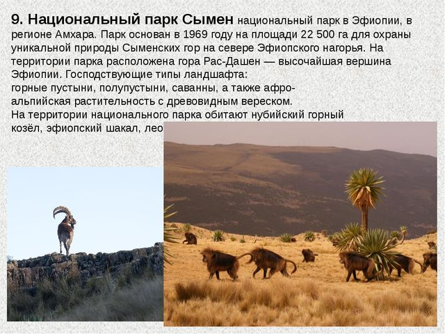 9. Национальный парк Сыменнациональный парквЭфиопии, в регионеАмхара. Пар...