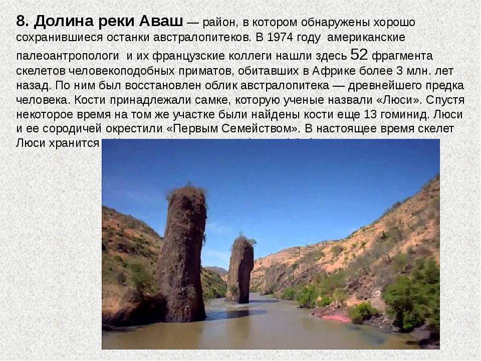 8. Долина реки Аваш — район, в котором обнаружены хорошо сохранившиеся останк...