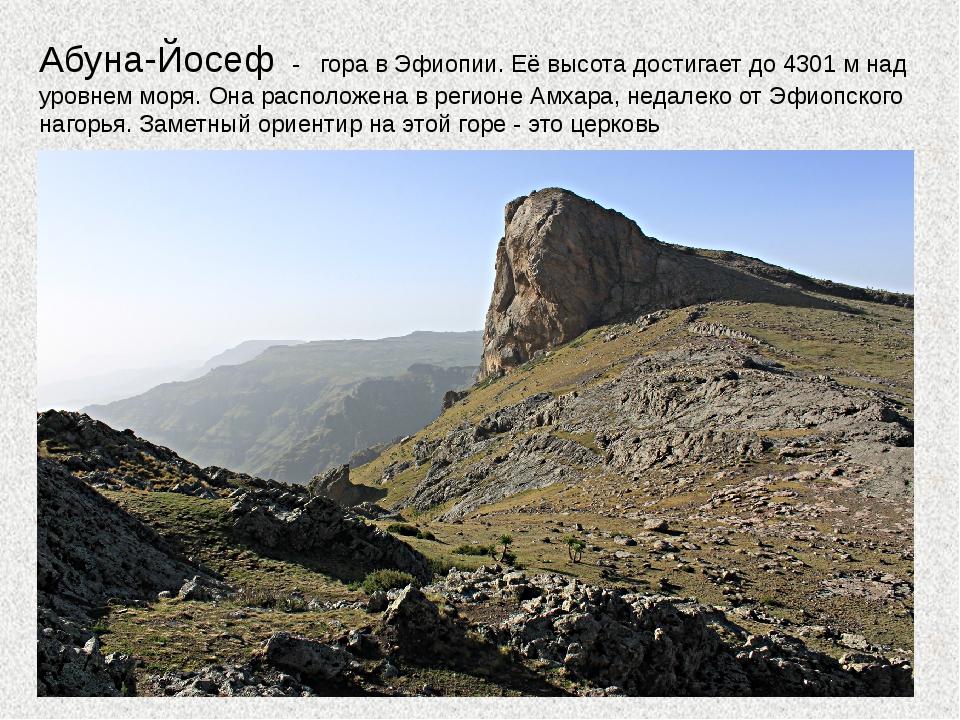 Абуна-Йосеф - гора в Эфиопии. Её высота достигает до 4301 м над уровнем моря....