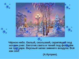 Чёрное небо. Белый, скользкий, скрипящий под ногами снег. Беготня света и те