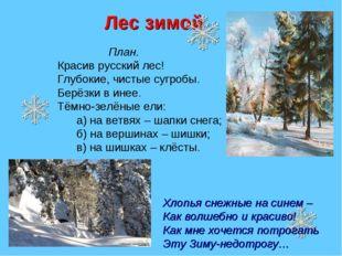 Лес зимой План. Красив русский лес! Глубокие, чистые сугробы. Берёзки в инее.