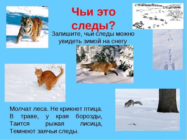 Чьи это следы? Запишите, чьи следы можно увидеть зимой на снегу Молчат леса....