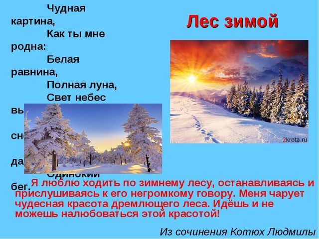 Лес зимой Я люблю ходить по зимнему лесу, останавливаясь и прислушиваясь к ег...