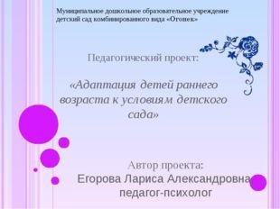 Педагогический проект: «Адаптация детей раннего возраста к условиям детского