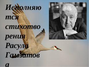 Исполняются стихотворения Расула Гамзатова В Хиросиме верят одной сказке: Выж
