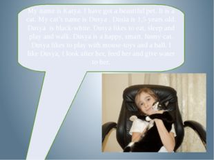 My name is Katya. I have got a beautiful pet. It is a cat. My cat's name is