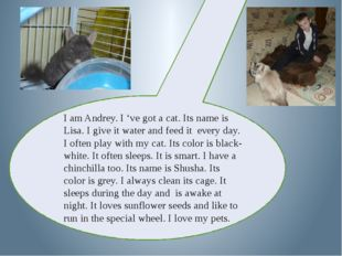 I am Andrey. I 've got a cat. Its name is Lisa. I give it water and feed it