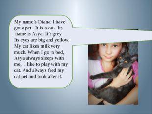 My name's Diana. I have got a pet. It is a cat. Its name is Asya. It's grey