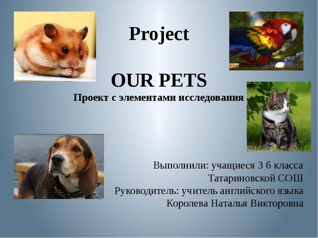 Project OUR PETS Проект с элементами исследования Выполнили: учащиеся 3 б кла...