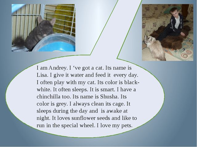 I am Andrey. I 've got a cat. Its name is Lisa. I give it water and feed it...