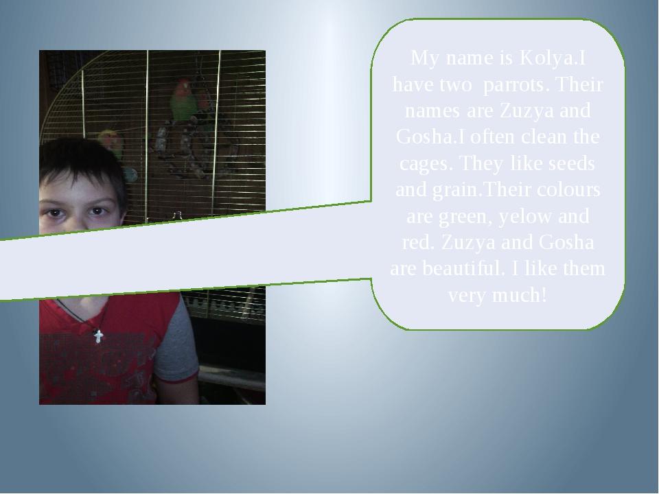 My name is Kolya.I have two parrots. Their names are Zuzya and Gosha.I often...