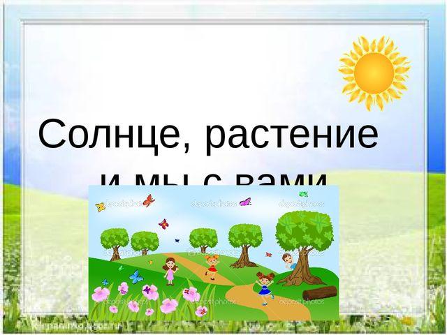 Солнце, растение и мы с вами