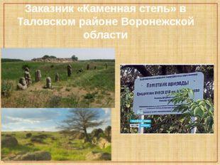 Заказник «Каменная степь» в Таловском районе Воронежской области