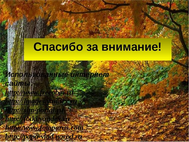 Спасибо за внимание! Использованные интернет сайты: http://www.freeoboi.ru ht...