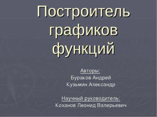 Построитель графиков функций Авторы: Бураков Андрей Кузьмин Александр Научный