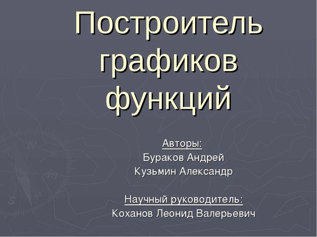 Построитель графиков функций Авторы: Бураков Андрей Кузьмин Александр Научный...