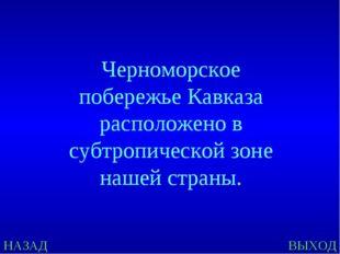 НАЗАД ВЫХОД Черноморское побережье Кавказа расположено в субтропической зоне