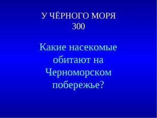 У ЧЁРНОГО МОРЯ 300 Какие насекомые обитают на Черноморском побережье?