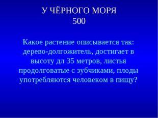У ЧЁРНОГО МОРЯ 500 Какое растение описывается так: дерево-долгожитель, достиг