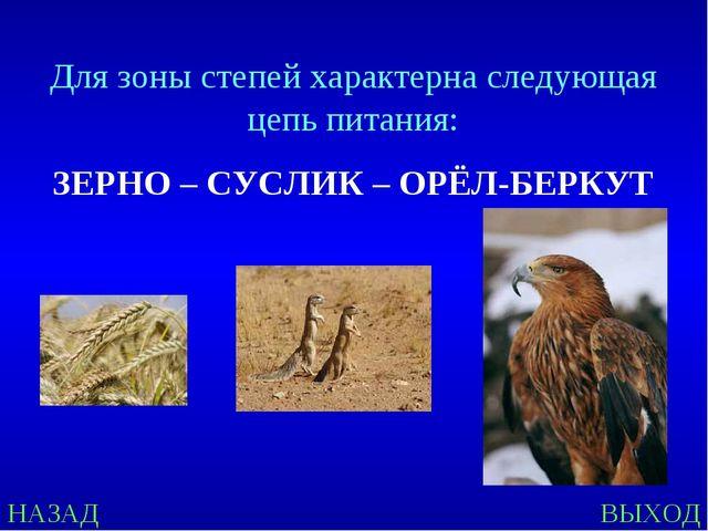 НАЗАД ВЫХОД Для зоны степей характерна следующая цепь питания: ЗЕРНО – СУСЛИК...