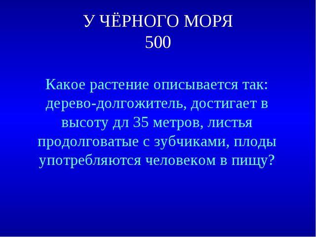 У ЧЁРНОГО МОРЯ 500 Какое растение описывается так: дерево-долгожитель, достиг...