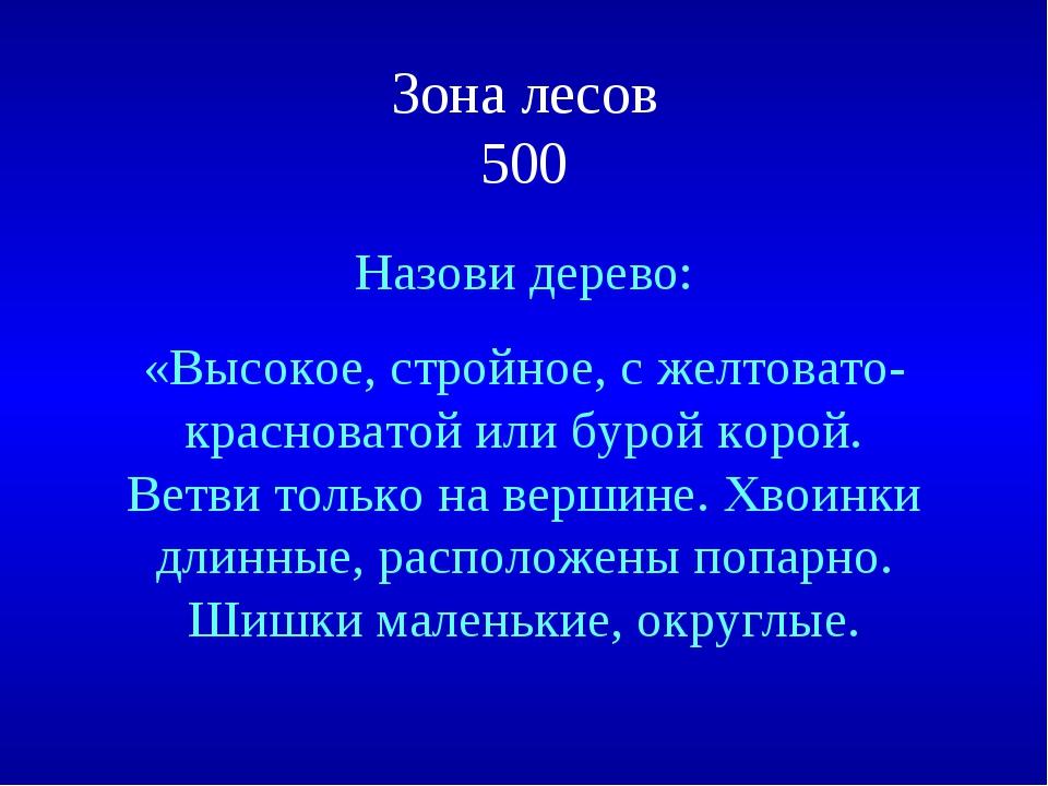 Зона лесов 500 Назови дерево: «Высокое, стройное, с желтовато-красноватой или...