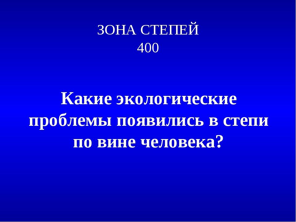 ЗОНА СТЕПЕЙ 400 Какие экологические проблемы появились в степи по вине челове...