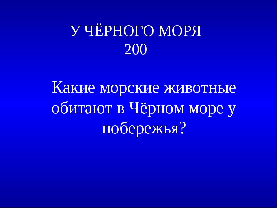 У ЧЁРНОГО МОРЯ 200 Какие морские животные обитают в Чёрном море у побережья?