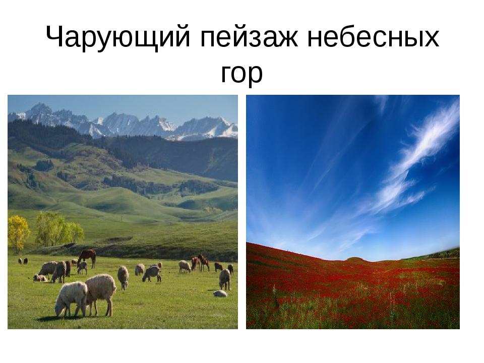 Чарующий пейзаж небесных гор
