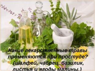 - Какие лекарственные травы применяются при простуде? (шалфей, чабрец, базили