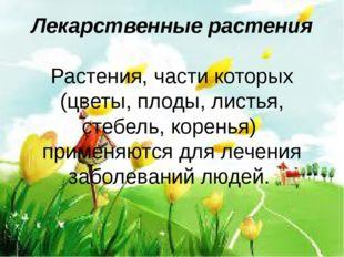 Лекарственные растения Растения, части которых (цветы, плоды, листья, стебель