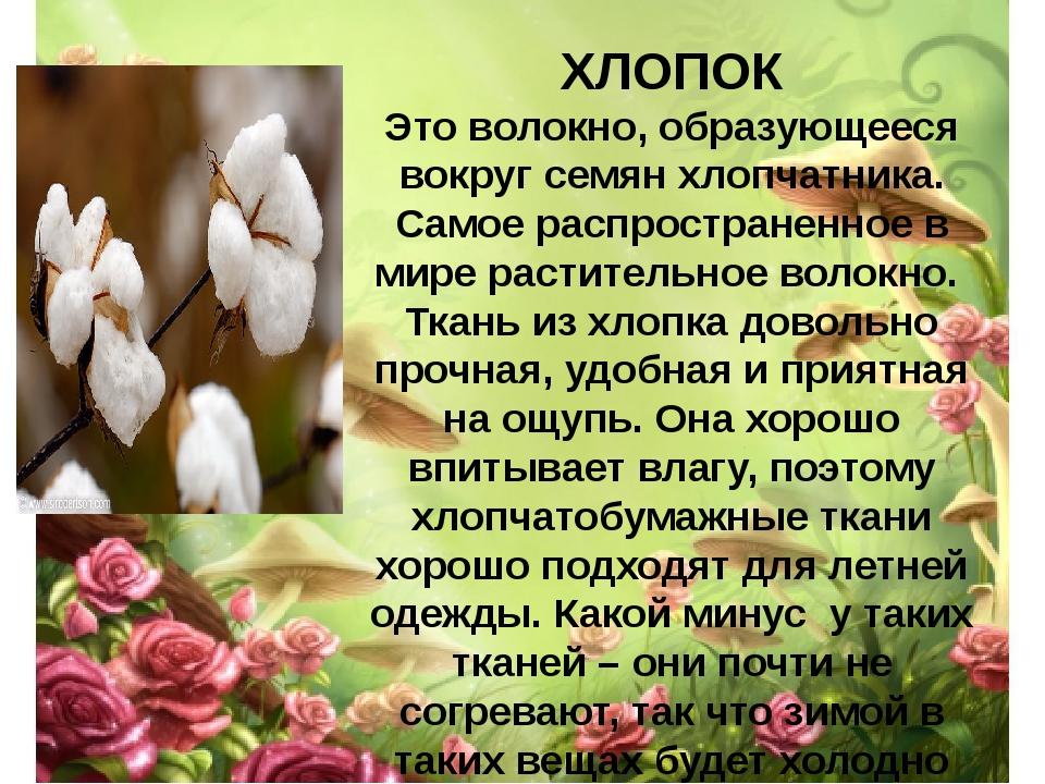 ХЛОПОК Это волокно, образующееся вокруг семян хлопчатника. Самое распростране...