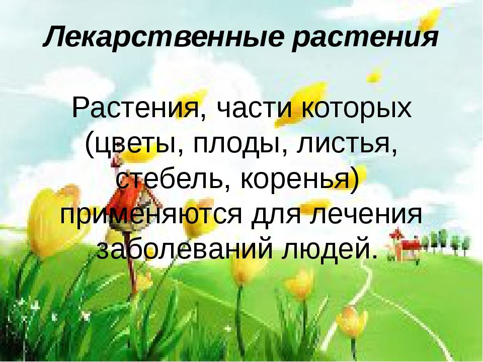 Лекарственные растения Растения, части которых (цветы, плоды, листья, стебель...