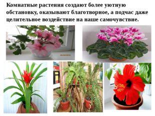 Комнатные растения создают более уютную обстановку, оказывают благотворное, а