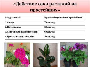 «Действие сока растений на простейших» Вид растений Время обездвижения прост